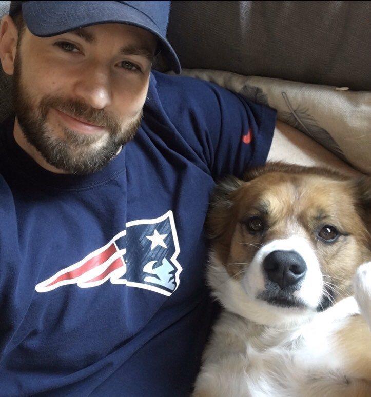 克里斯伊凡粉絲紛紛貼出他與愛犬合影的照片替代不雅照。圖/摘自IG