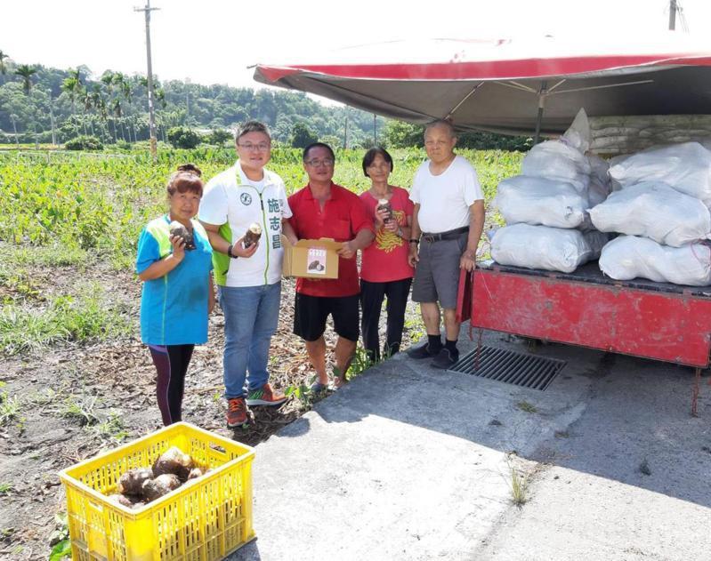 台中市議員施志昌幫芋農銷售。記者游振昇/攝影