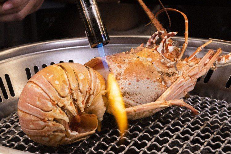 貝里斯加勒比海巨大龍蝦,原價1,380元,優惠加購價380元。圖/哞哞屋提供