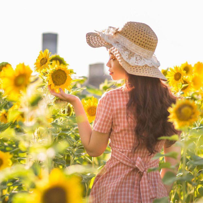 ▲向日葵花海景點推薦-彩虹河濱公園。 (圖/rabbit.fc, Instagram)