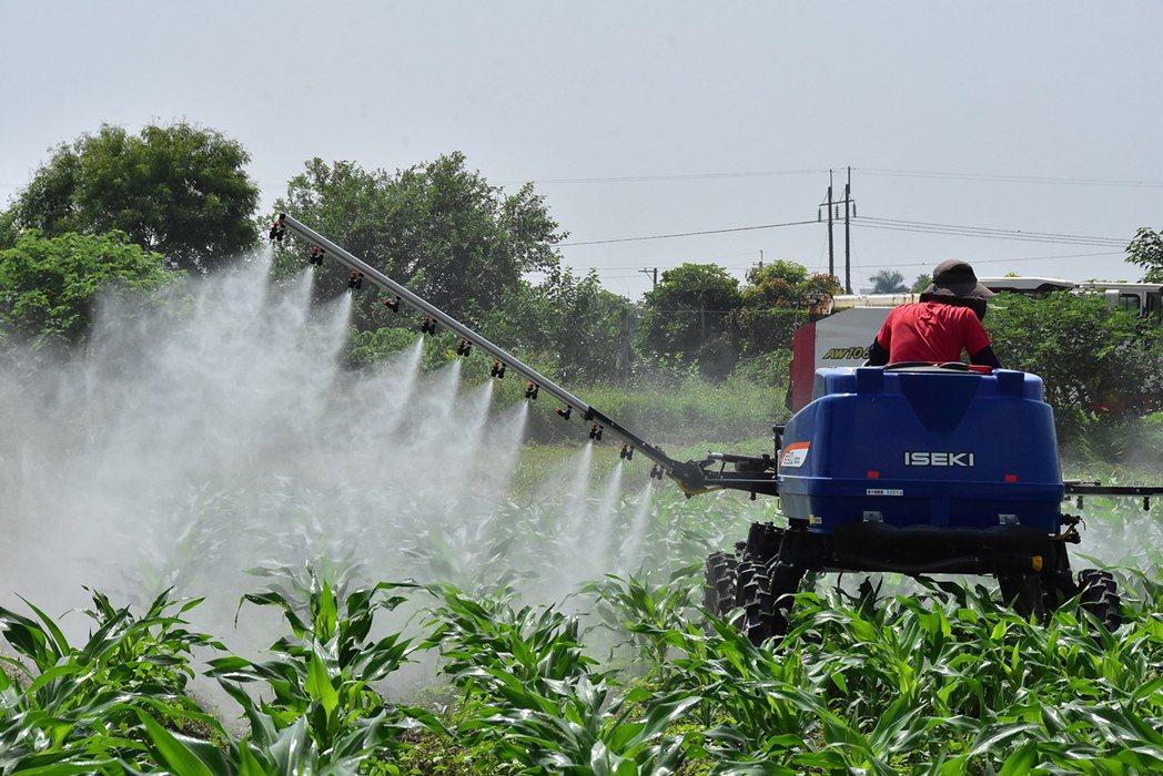 坐式防鋤機在有機農田的操作。 明道大學/提供。
