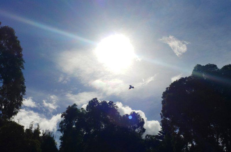 氣象局今(16日)表示,天氣晴朗炎熱,南投市下午測得攝氏37.9度高溫。中央社