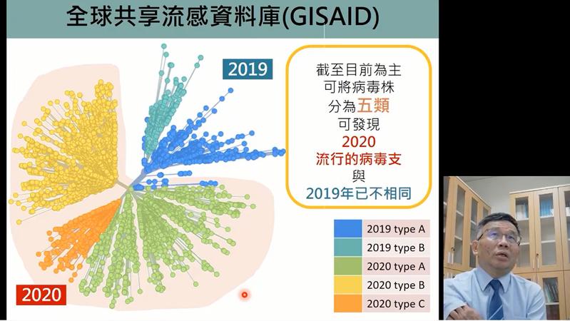 2020年2至3月流行的新冠病毒株以2019年的病毒株為主,2020年4月後已經演變為不同型態,目前可以分為五類,已與2019年之病毒株不同。圖/取自新冠肺炎防疫科學報告直播
