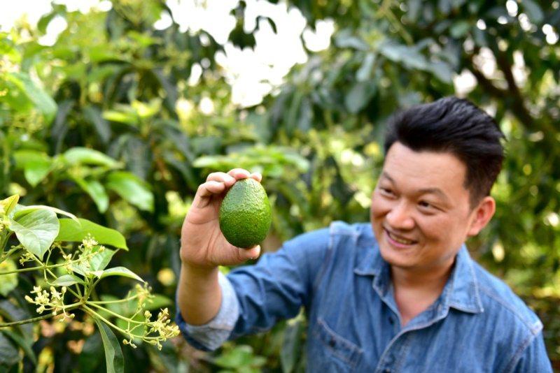 李耀堂為酪梨與番茄寫成一本書。 圖/日日幸福出版提供