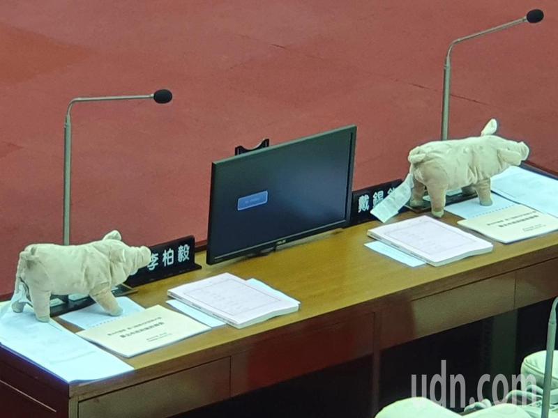 台北市長柯文哲下午將赴議會進行施政報告,國民黨市議會黨團聚焦美豬議題,藍營議員每人準備一隻粉紅色「網紅豬」,要逼柯文哲對反美豬表態。記者楊正海/攝影