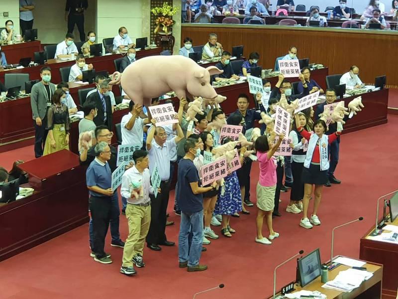台北市議會新會期昨天開議,市長柯文哲下午赴議會進行施政報告。國民黨市議會黨團聚焦美豬議題,藍營議會黨團扛出一隻粉紅豬道具,要求柯文哲對反美豬表態。記者楊正海/攝影