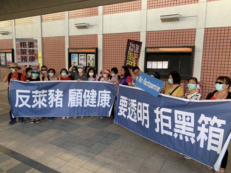 國民黨立委陳玉珍、葉毓蘭、賴士葆、費鴻泰今下午率民眾赴松山機場表達反萊豬立場。記者鄭媁/攝影