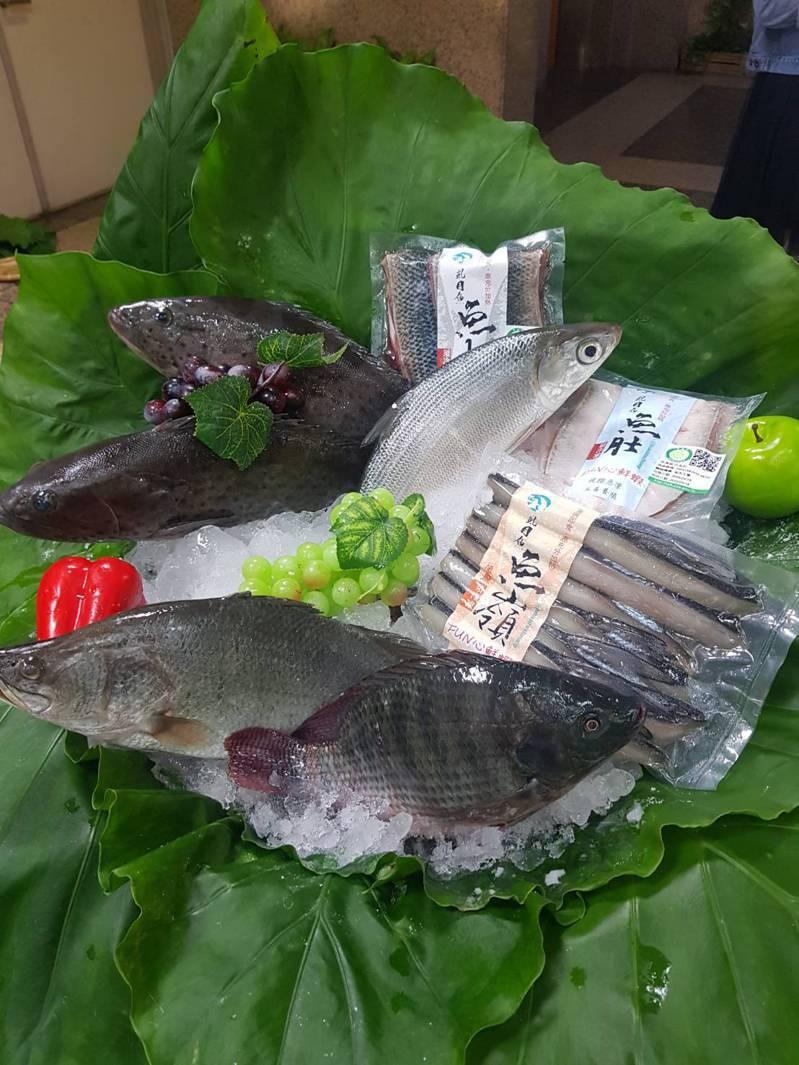 今年受到新冠肺炎影響,交通受阻、消費力薄弱,國內的養殖魚量多價跌;中秋節即將到來,農委會漁業署推中秋燒烤烤國產水產品,增加漁獲消費量。記者彭宣雅/攝影