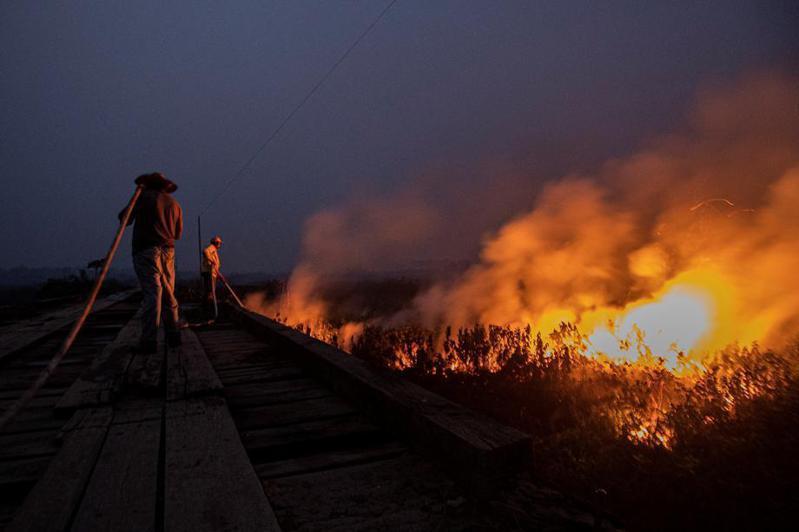 巴西國家太空署最新數據指出,10月中西部大沼澤再次創下自1998年太空署開始監測以來,當月起火點數目最多紀錄。 圖/歐新社資料照