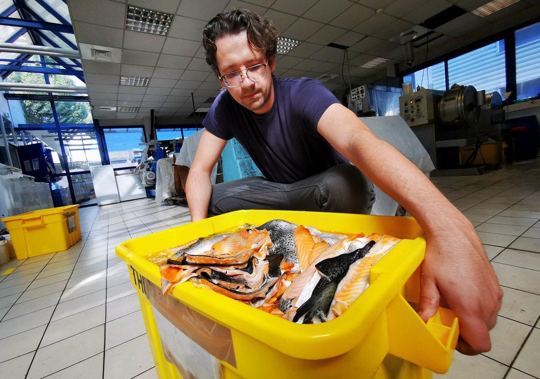 魚皮通常會在料理過程中被餐廳丟棄,但法國公司Ictyos卻想將它們製成皮革,再做...