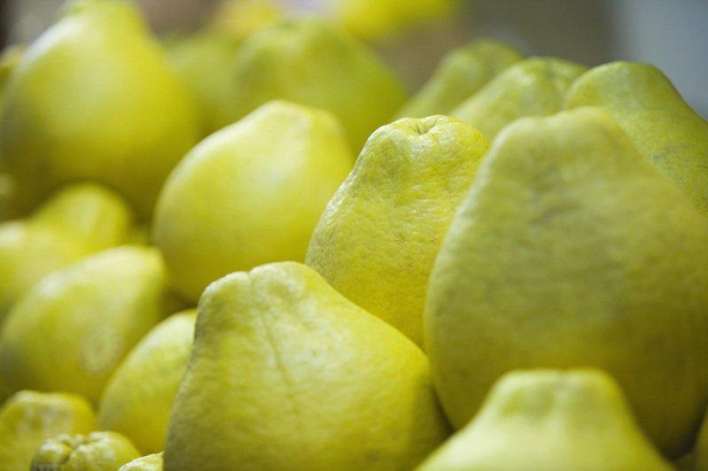 8瓣=1份水果!營養師教你正確吃文旦控膽固醇降血壓