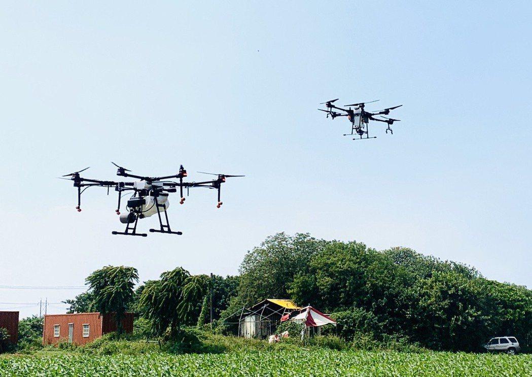 大、小型農用無人機實際操作。 黃啟銘/攝影。