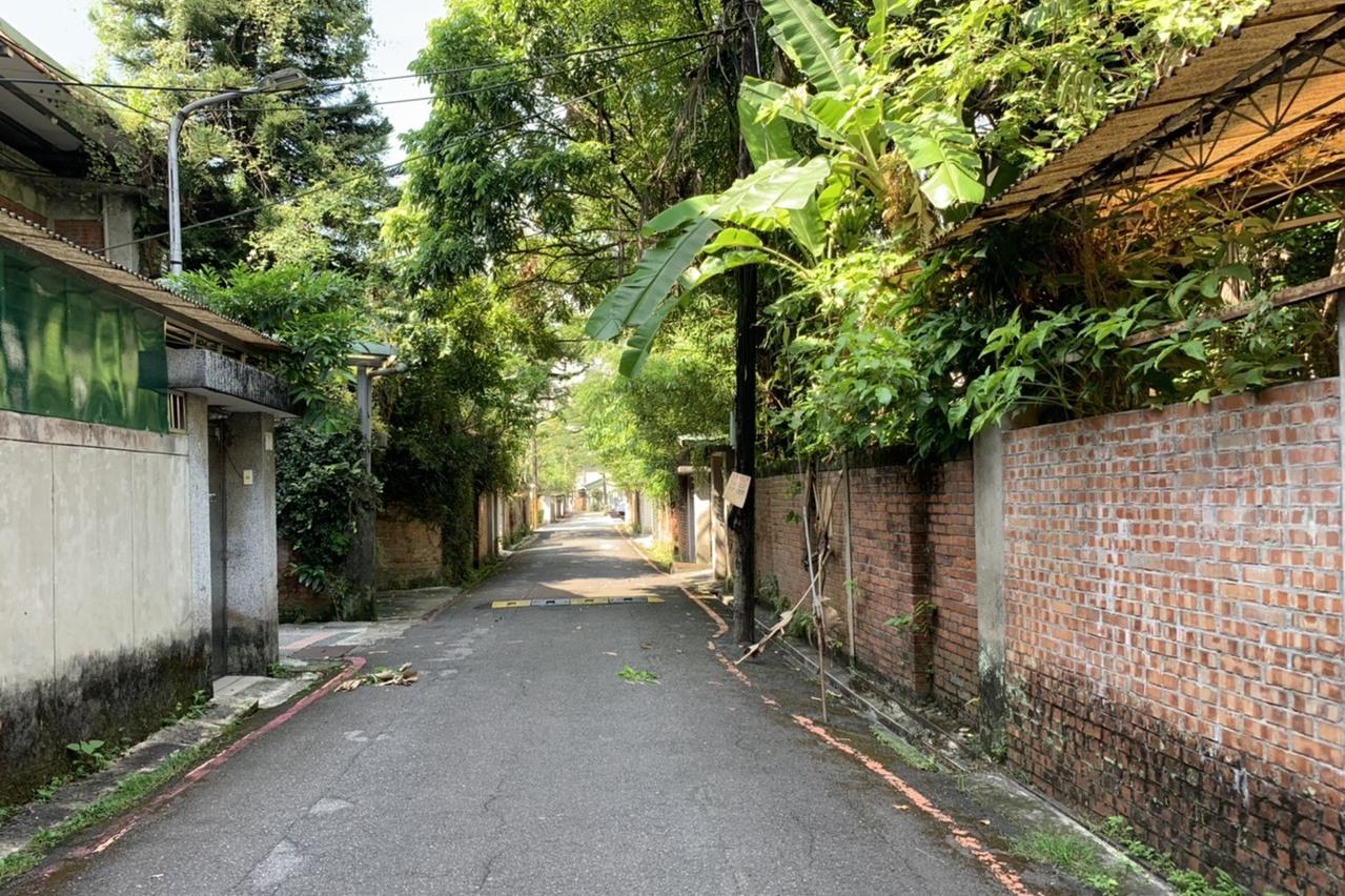 政大化南新村影劇熱點 9棵「紀念樹」