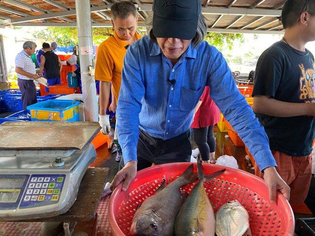 詹宏志到屏東漁港找魚。圖/陳志煌提供
