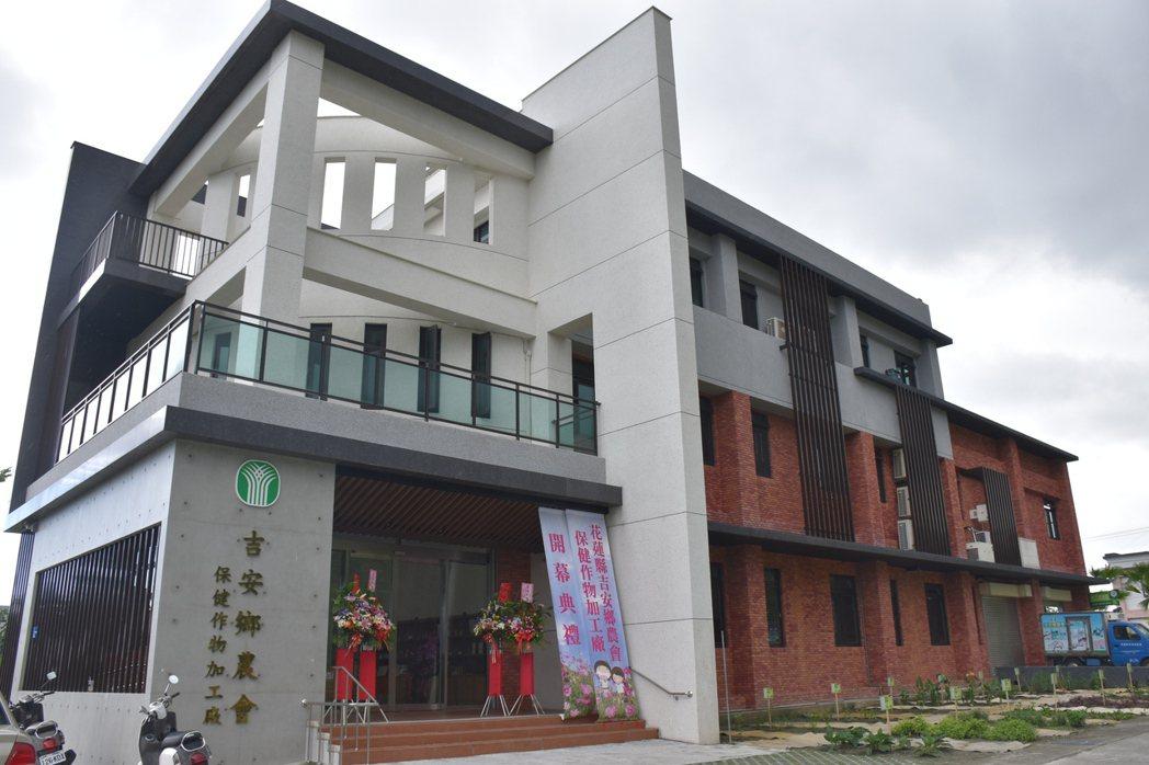 花蓮縣首座保健作物加工廠完工落成,1年可代工原料量約180公噸。記者王思慧/攝影