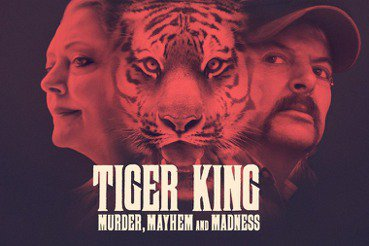 一場以動物為名義的人類戰爭:犯罪紀錄片《虎王》為何惹議?