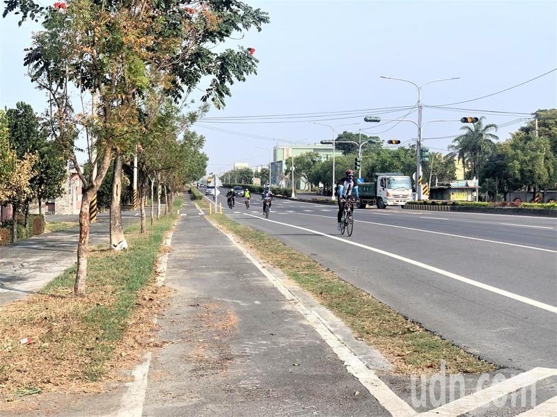 台南市台一省道有縣府時期爭取設置的自行車專用道,當年風光啟用,但如今車友反映落葉及路面不平,反而少人騎乘。記者吳淑玲/攝影