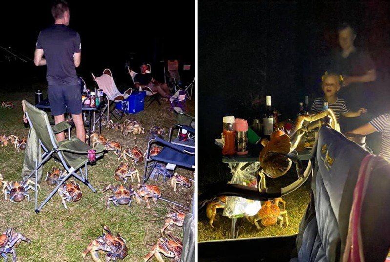 澳洲一家人在聖誕島舉辦BBQ派對時,突然冒出大批椰子蟹訪客。 圖擷自Christmas Island Tourism臉書粉專