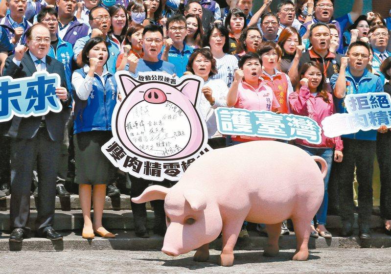 國民黨主席江啟臣(左三)日前率領執政縣市長及黨籍立委,宣布「捍衛台灣豬,瘦肉精零檢出,啟動公投連署」。圖/聯合報系資料照片