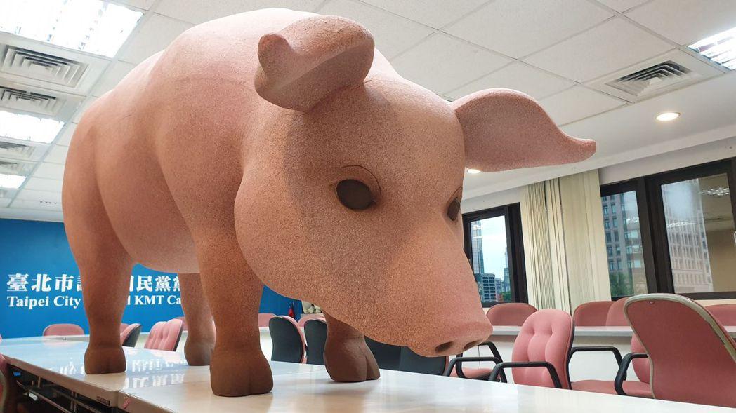 台北市長柯文哲日前至議會施政報告,藍營議員帶「網紅豬」要求柯對反美豬表態。本報資...