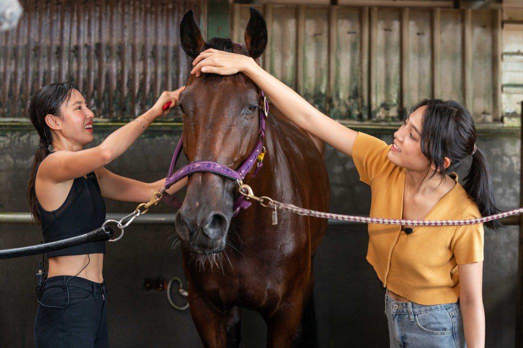 房思瑜(左)與Dora幫柔柔梳理毛髮。圖/TVBS提供