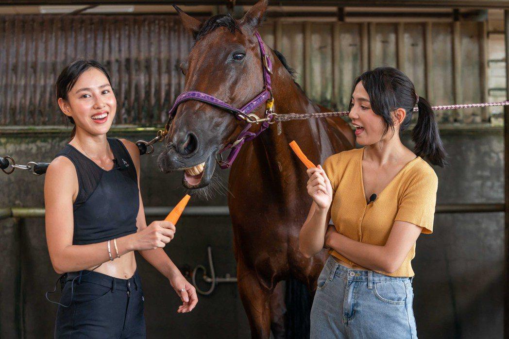 房思瑜(左)與Dora餵柔柔吃紅蘿蔔。圖/TVBS提供