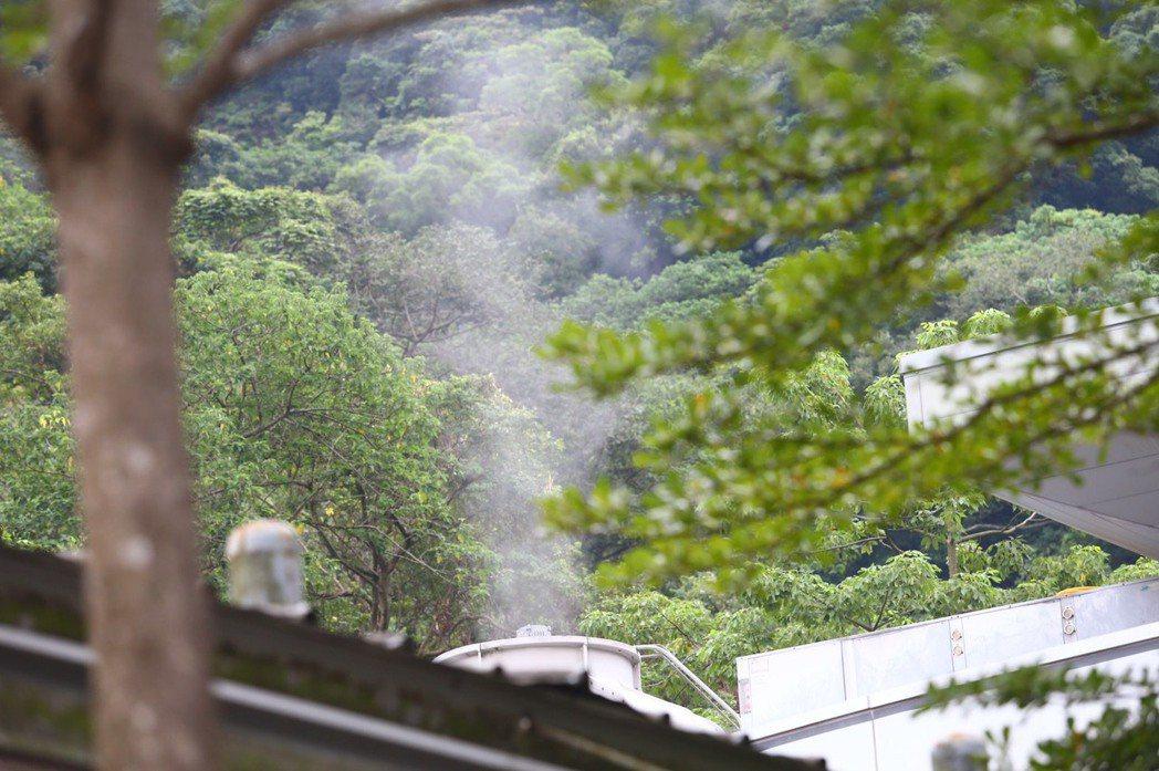 小鬼火化時化為一縷輕煙。記者杜建重/攝影