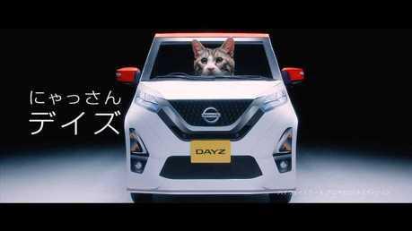 影/「這是朕的座駕!」 Nissan推出超可愛貓星人專用Dayz模型車