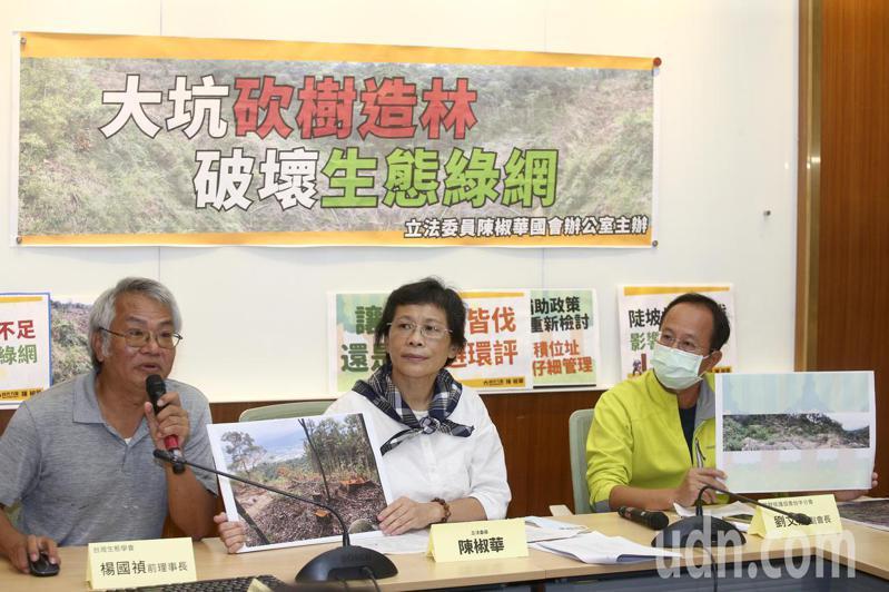 立委陳椒華(中)舉辦「大坑砍樹造林破壞生態綠網」記者會,表示環團指出台中大坑砍樹造林破壞生態。記者蘇健忠/攝影