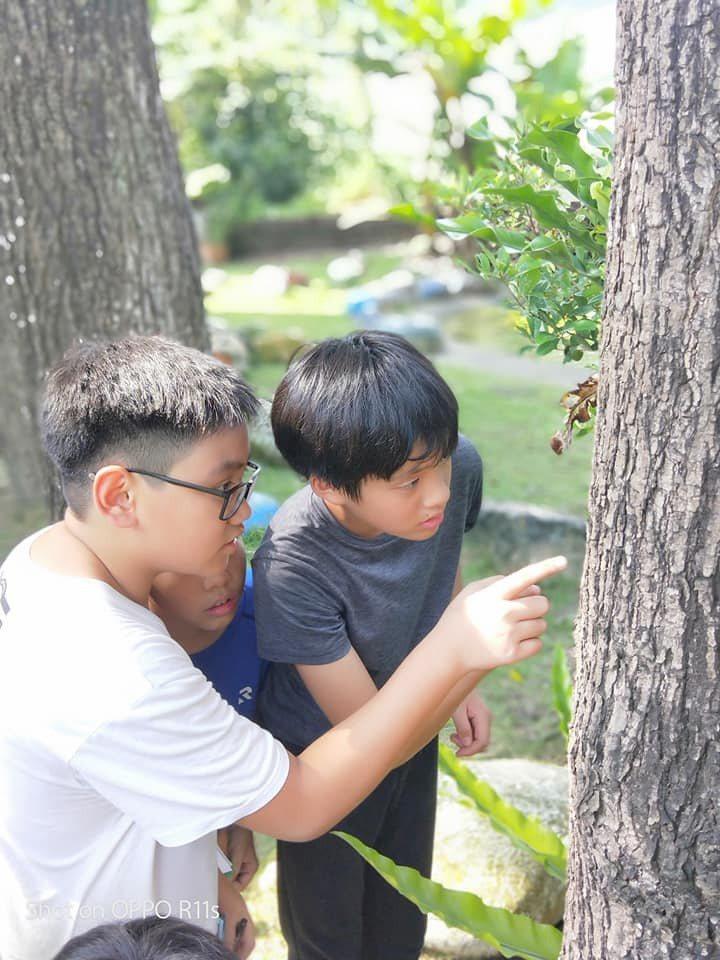 國姓鄉長福國小規畫攀樹、攀登高山等課程,讓學生樂在學習、勇於挑戰。圖/南投縣教育處提供