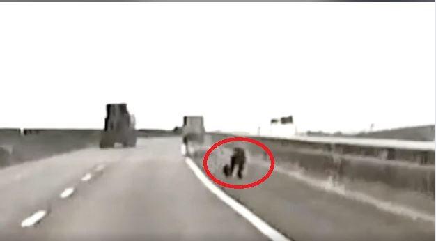 重機騎士倒地,趕緊爬到路旁。圖取自臉書