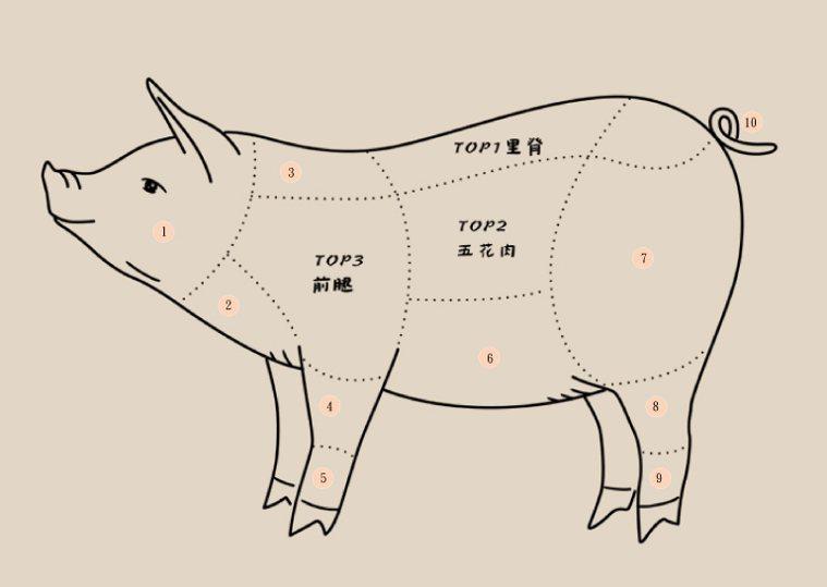 插畫/柚子沫,摘自《就愛吃肉!人生盡歡,肉慾橫流》