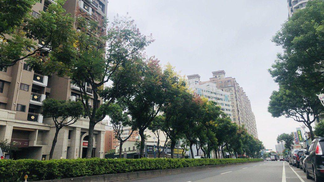中壢體育園區主要道路的龍慈路,未來打通至台66線可接國道。 圖/台灣房屋提供