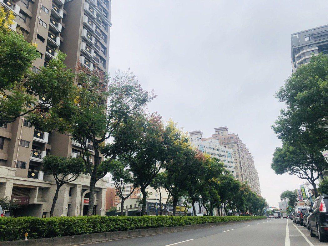 中壢體育園區主要道路的龍慈路,未來打通至台66線可接國道。圖/台灣房屋提供