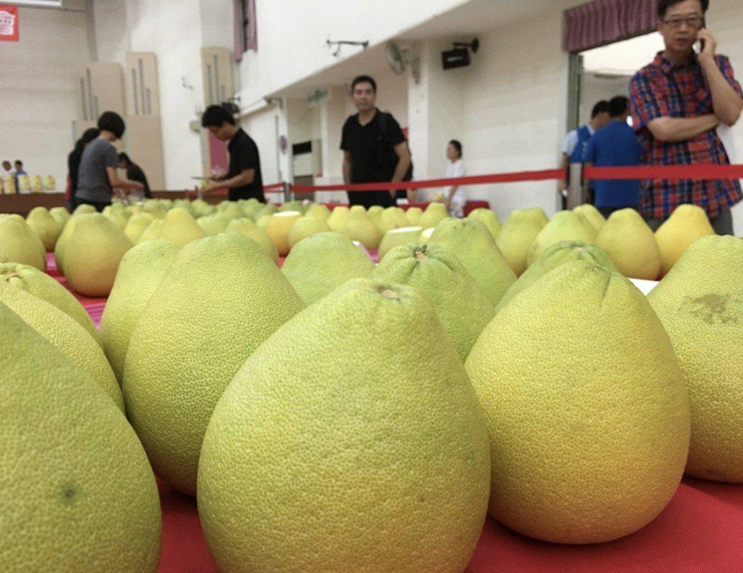 中秋吃柚子是一樂事。圖/本報資料照片