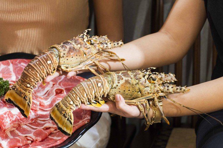 問鼎推出貝里斯加勒比海巨大龍蝦「第2隻10元」的加購優惠。圖/問鼎提供