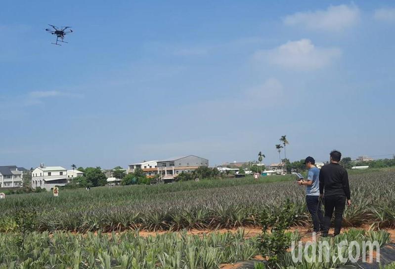 農委會農業試驗所研發以無人機監測鳳梨影像、高光譜品質選果檢測等成果,可準確辨識鳳梨品質。記者陳玫伶/攝影