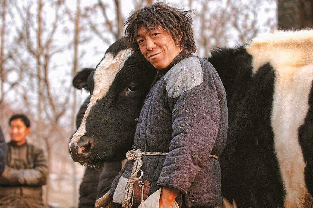 《鬥牛》(2009)電影裡就以牛在戰亂人間的輾轉流離,帶出對人性的省思。 圖/《...