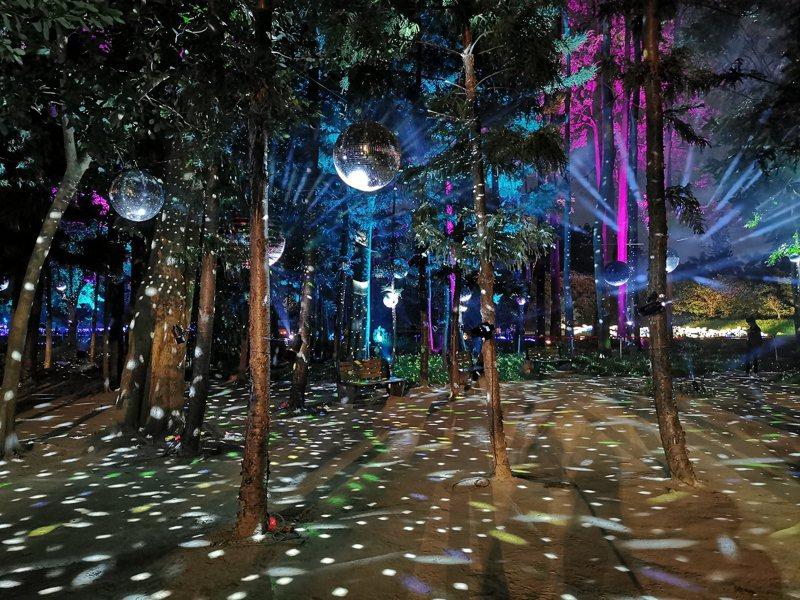 「2020嘉義市光織影舞」光影藝術展,透過光影折射在樹林裡呈現美麗影像。記者卜敏正/攝影