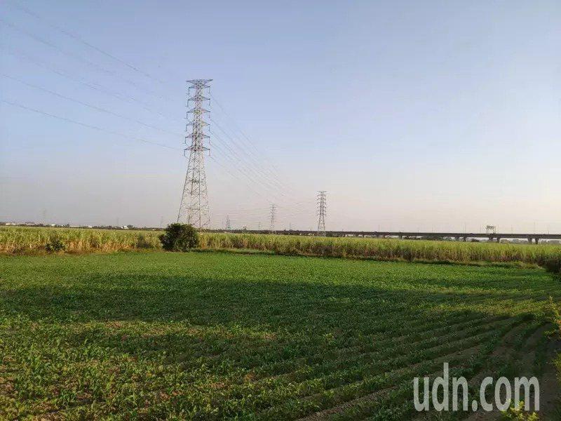 「南科三期」落腳地台糖新市看西農場。本報資料照片