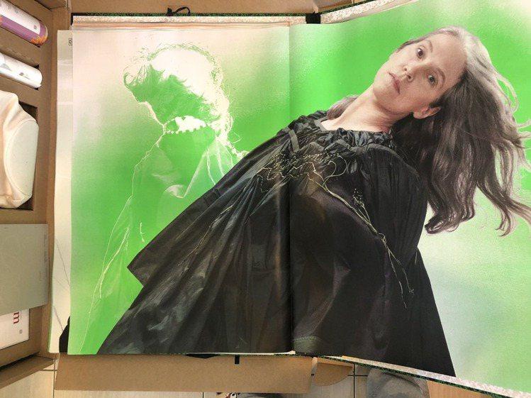 綠色目錄翻開來是燈箱尺寸的形象圖海報們。記者楊詩涵/攝影