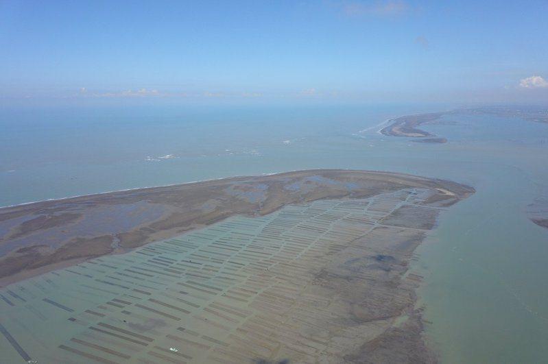 成大研究,外傘頂洲可能三年內掰掰,衝擊養蚵業。圖/聯合報系資料照片