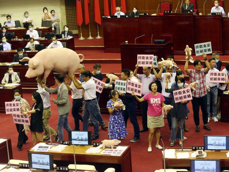 2022年選舉,開放美豬勢必成為在野黨發動攻擊的最要議題,縣市長與基層民代層級選戰中,民生食安議題更易引發選民關注與共鳴。圖/聯合報系資料照片