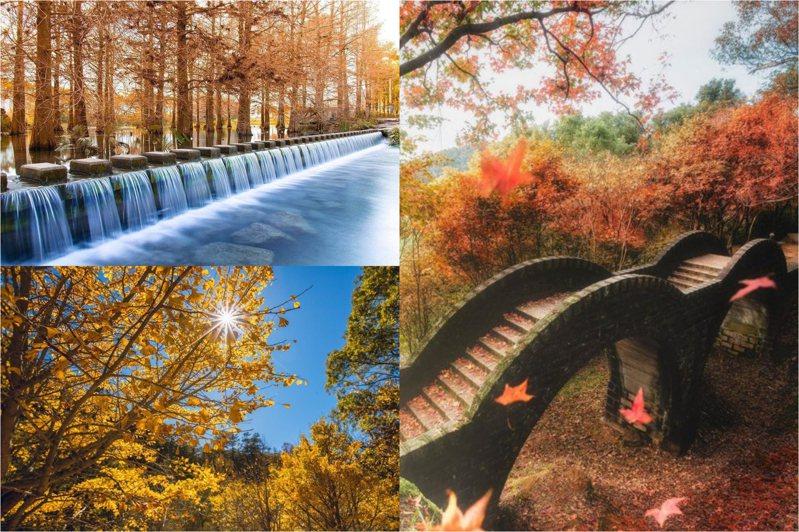 (圖/zhangxunfang7, Instagram、xfengliang, Instagram、shengkai_travel, Instagram)