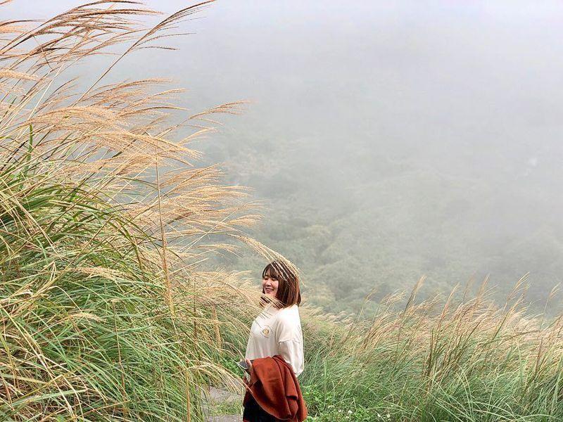 ▲芒草季景點推薦-陽明山芒草季。 (圖/07vanessa18, Instagram)
