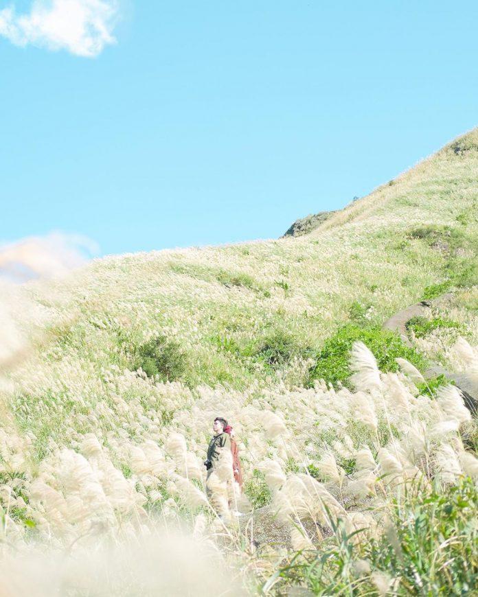 ▲芒草季景點推薦-金瓜石地質公園。 (圖/gg_______1, Instagram)