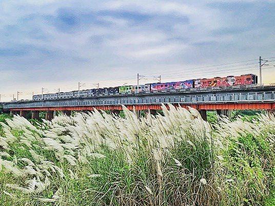 ▲芒草季景點推薦-潮州大橋。 (圖/chenjinsin, Instagram)