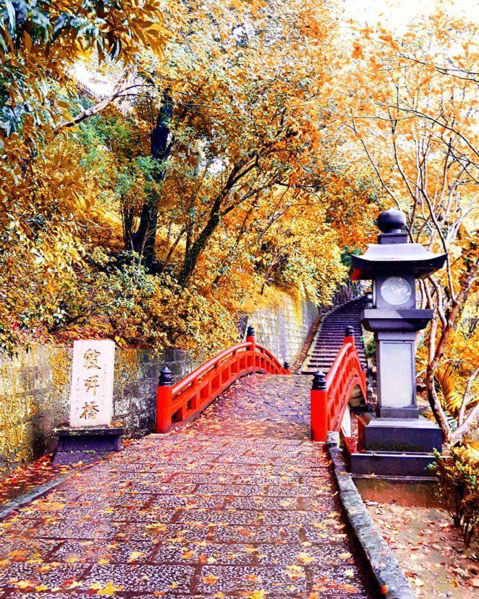 ▲北部賞楓景點-汐止拱北殿。 (圖/jennychen.tw, Instagram)