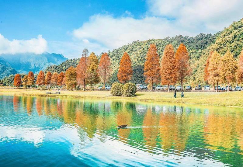▲北部落羽松景點-蜊埤湖。 (圖/cindy_xu3ejo3, Instagram)
