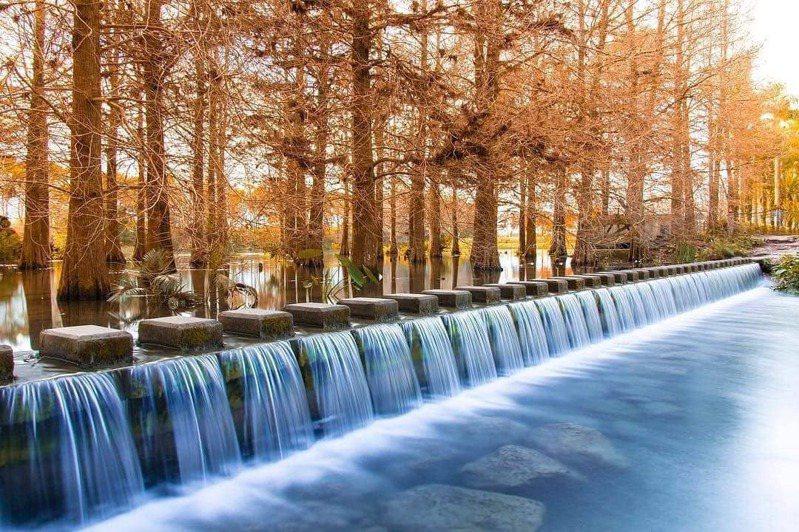 ▲東部落羽松景點-雲山水夢幻湖。 (圖/zhangxunfang7, Instagram)